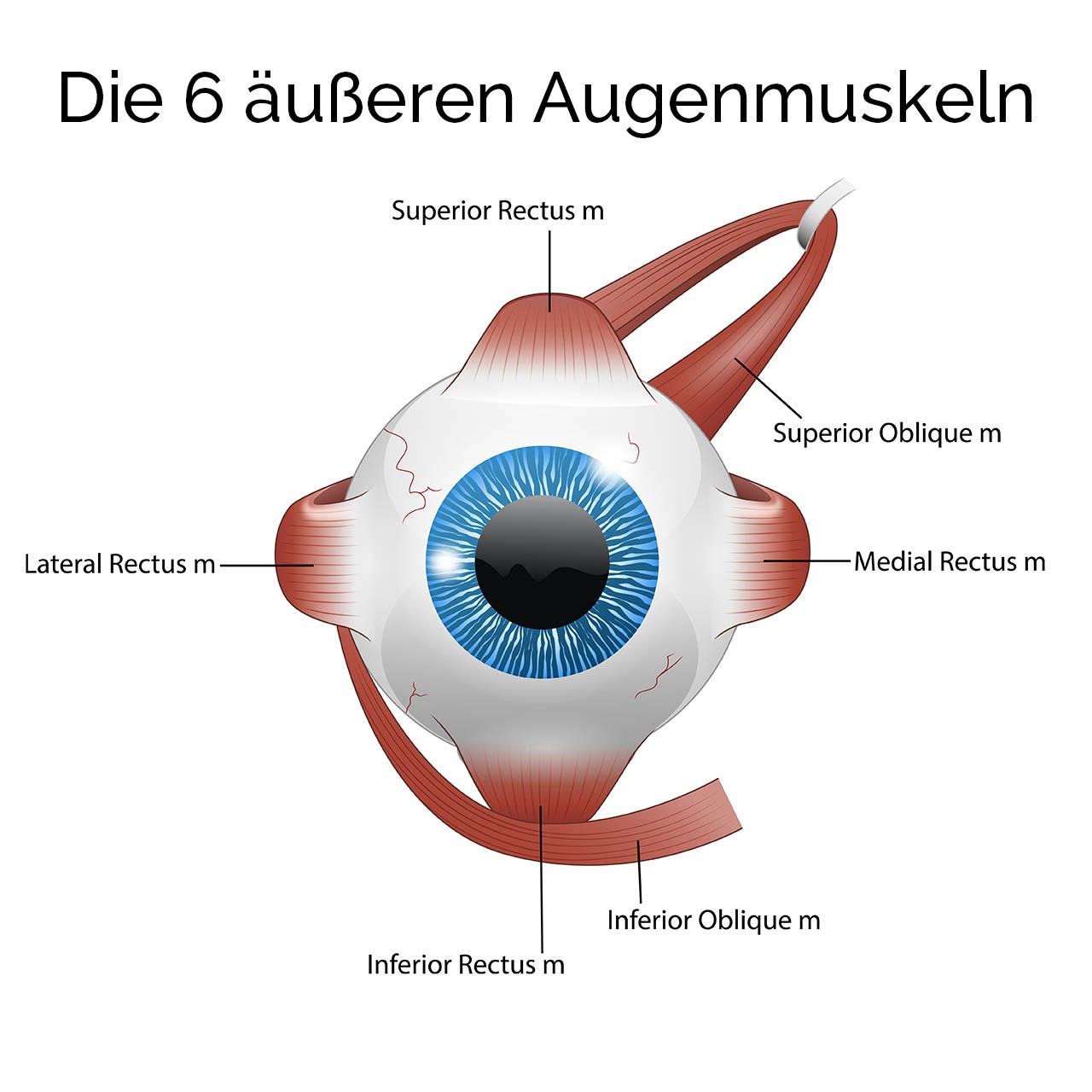 Weitsichtigkeit verbessern, Mithal Al-Khafagi Augentraining